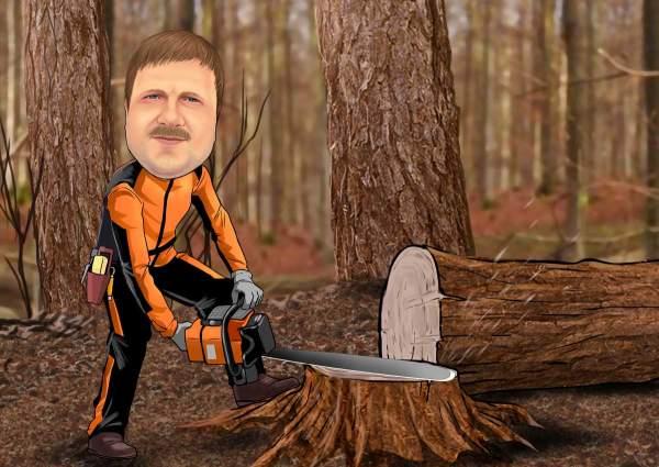 Der Baumfäller